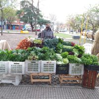 Cosecha Agroecológica